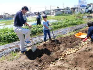野菜・収穫祭